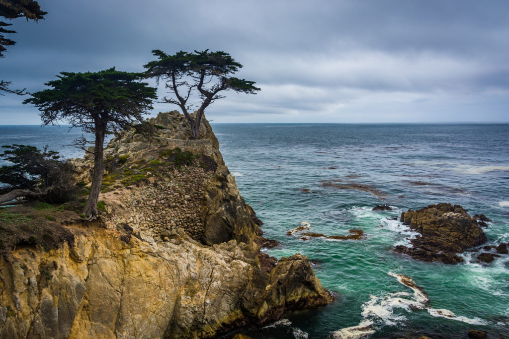 Lone-Cypress-from-17-Mile-Drive-in-Pebble-Beach